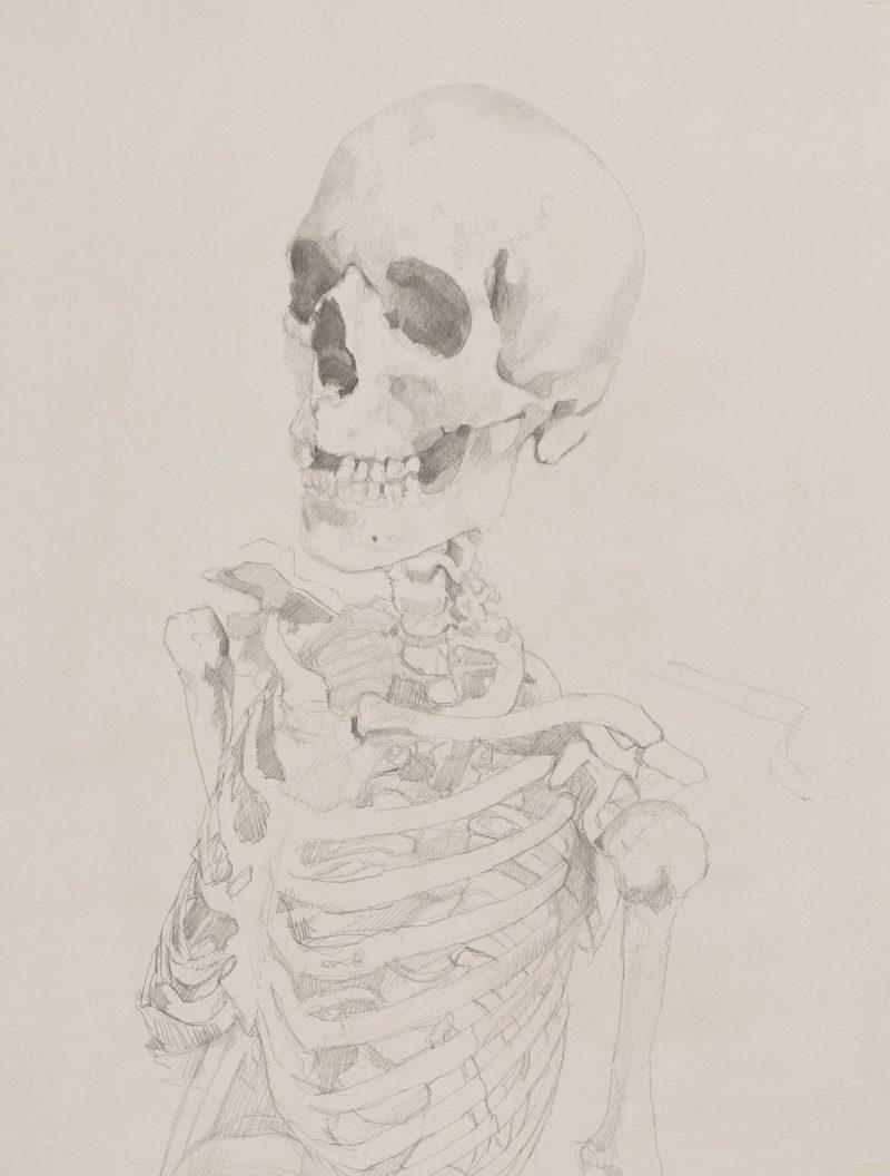 <p>Vanitas Portrait 1, 39 x 32cm</p>