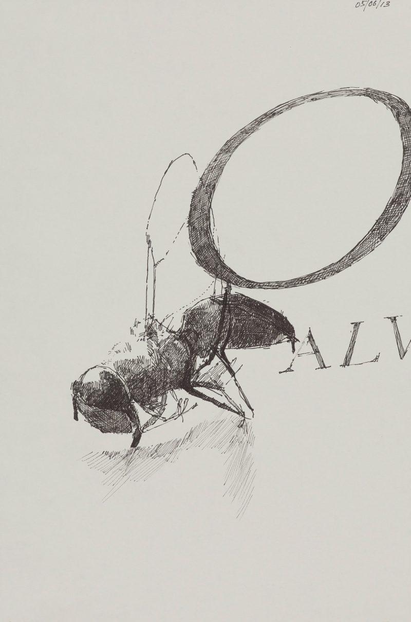 <p>Alive 'O', ink, 25 x 20cm</p>