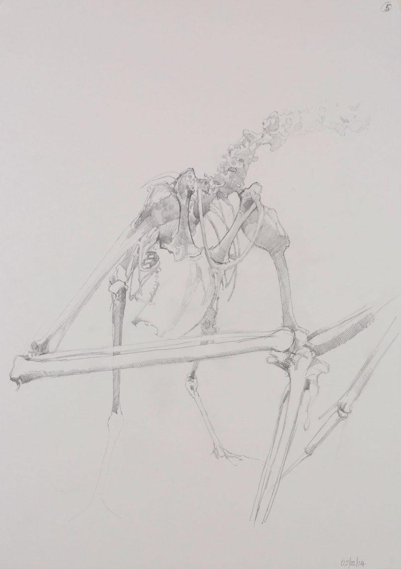 <p>Gull Skeleton 111, pencil, 62 x 48cm</p>